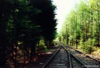 Anschluss Schwarzenpfost mit Gleisen